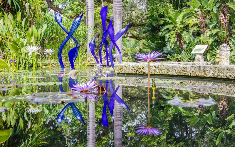 The Flora And Fauna Found At Fairchild Tropical Botanic Garden Is  Absolutely Stunning. They Also Have A Butterfly Conservatory.