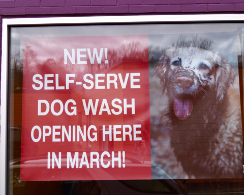20 great jewelry shops in virginia scoutology self serve dog wash coming soon to animal connection solutioingenieria Images